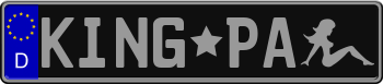 EEC German License Plate Black with Silver Text 999999